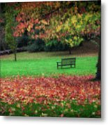 An Autumn Bench At Clyne Gardens Metal Print