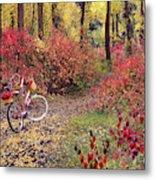 An Autumn Bike Trek Metal Print