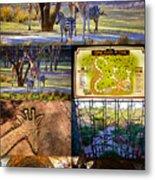 Animal Kingdom Lodge Poster A Metal Print