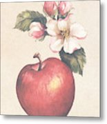 Apple And Blossoms Metal Print
