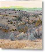 April Day Reverie Metal Print