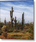 Arizona Dreaming Metal Print