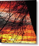 Arizona Sunset Through Branches Metal Print