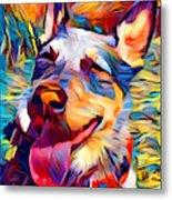 Australian Cattle Dog 2 Metal Print