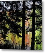 Autumn Colors At The Spa  Metal Print