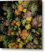 Autumn Forest - Aerial Photography Metal Print