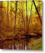 Autumn - Krasna River Metal Print