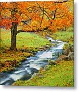 Autumn In Vermont G Metal Print