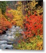Autumn Rapids Metal Print