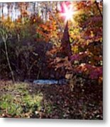 Autumn Starburst Metal Print