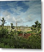 Autumnal Altamaha Metal Print