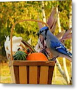 Autumn's Bounty Metal Print