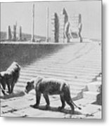 Babylon After Being Destroyed Metal Print