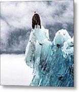 Bald Eagle On The Glacier Metal Print