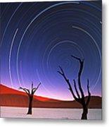 Barren Acacia Trees Acacia Horrida Metal Print
