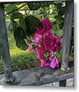 Bars Of Rose Metal Print