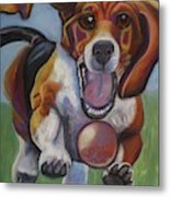 Beagle Chasing Ball Metal Print