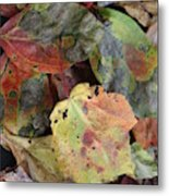 Beauti Fall Metal Print