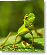 Beautiful Animal In The Nature Habitat Metal Print