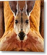 Big Boy Red Kangaroo   Metal Print