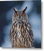 Big Eurasian Eagle Owl With Snowflakes Metal Print