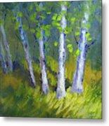 Birch Light Landscape Metal Print