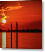 Bird On A Pole Sunrise Metal Print
