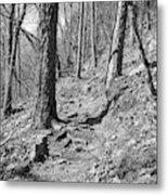 Black And White Mountain Trail Metal Print