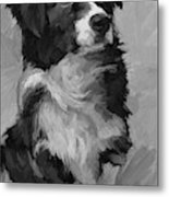 Black and White Pup Metal Print