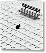 Black Cat Contemplating Bench Metal Print