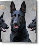 Black German Shepherd Dog Collage Metal Print