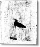 Black Ivory Actual 1b23z Metal Print