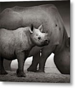 Black Rhinoceros Baby And Cow Metal Print