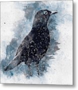Blackbird Grunge Edition Metal Print