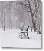 Blizzard In The Park Metal Print
