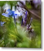 Blue And Green 2 Metal Print