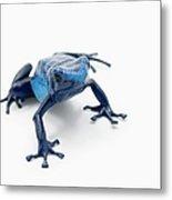 Blue Poison Dart Frog Dendrobates Metal Print