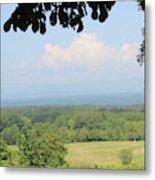 Blue Ridge Mountains And Vineyards Metal Print