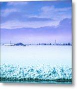 Blue Sky, White Field Metal Print