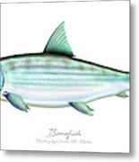 Bonefish Metal Print
