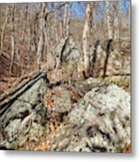 Boulders Along The Trail Metal Print