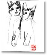 Brothers Cats Metal Print