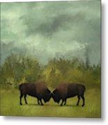 Buffalo Standoff - Painting Metal Print