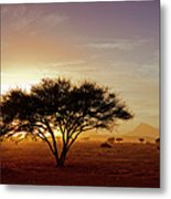 Burning Desert Metal Print