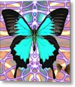 Butterfly Patterns 20 Metal Print