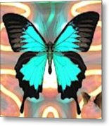 Butterfly Patterns 21 Metal Print