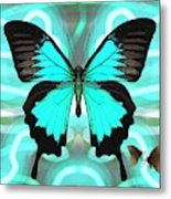 Butterfly Patterns 22 Metal Print
