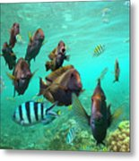 Butterflyfish And Sergeant Major Metal Print