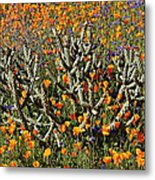 Cactus Poppies And Bluebells Metal Print