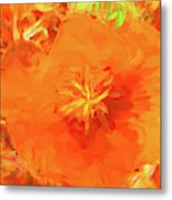 California Poppy Inside Metal Print